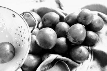 Connie's Potato Casserole